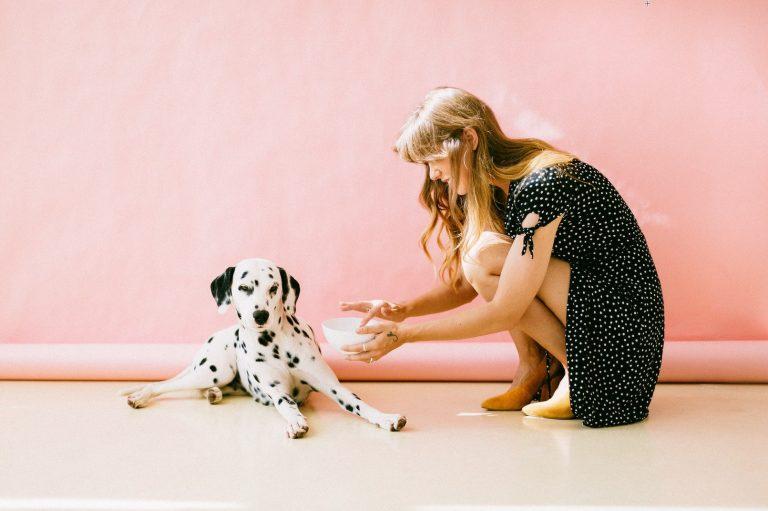 What You Should and Shouldn't Do When Bringing Your Dog To Work