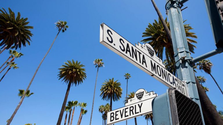 Leonardo DiCaprio Invests in LA-Based Venture Capital Firm Struck Capital